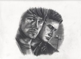 Supernatural cover 3 by Kitt-Otter