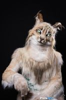 Fursuit Portrait - Jenari by FotoFurNL
