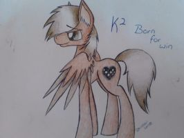 Born for Win- K2 by Rainbow-Note