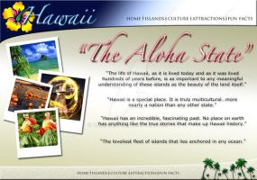 Hawaii website home page by CmM359821