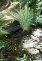 Pond by coixuong182