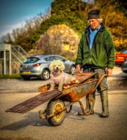 Just taking the dog for a walk by Vitaloverdose