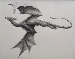 Flying 8 by umunschaas
