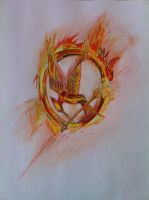 The Hunger Games' Mocking Jay. by ZorroHolmes