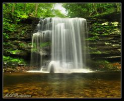 Harrison Wrights Falls 2011 by Dracoart
