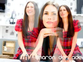 sharon den adel wallpaper 2 by LadyMoondance