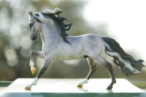 Iapyx Alipes Breyer by Droemar
