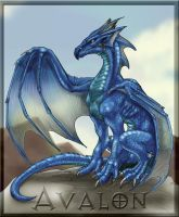 Avalon the blue dragon by mafagafa