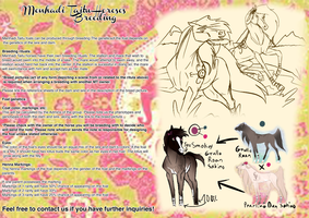 Menhadi Taitu Horse Breeding Sheet by 11IceDragon11