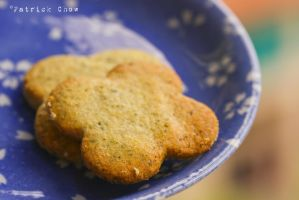 Macha cookies 2 by patchow