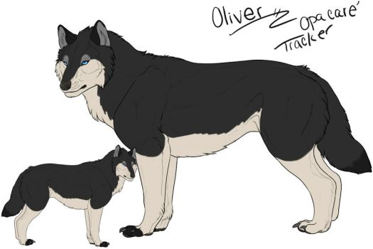 .:Oliver:. by WhiteCrowFH