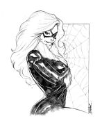 11x14 COMMISSION: BLACK CAT by jerkmonger