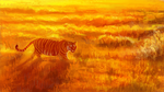 Fields of Gold by Maquenda