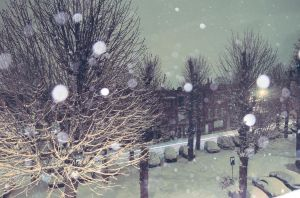 Winter wallpaper by Tihonov