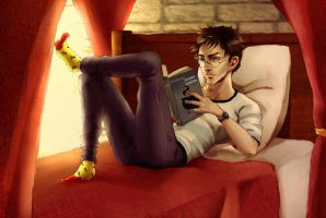 A Book and Socks by Nyctale