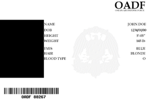 Osean Air Defense Force I.D. by UnsungBlood
