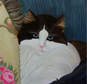 Finished oil painting Cat's Eyes ... by Nicolle08