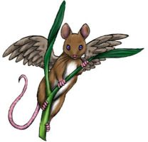 Winged Mouse by SilvanonOfTheOrchard