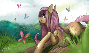 Hello, butterflies by CasyNuf