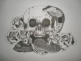 Snake and Skull by wetcanvas