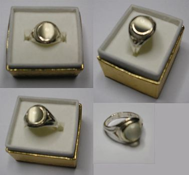 Silver Moon Ring by LunarBerry
