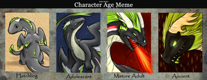 Age Meme by AngelicDragonPuppy
