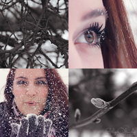 Winter in garden by eliska-olsanska