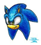 someone cut Sonic's head off again by TheTinfoilRat