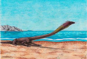 A Dragon resting on the shore by Xiphactinus