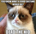 I Know A Good Costume (Grumpy Cat) by AmyRose2411