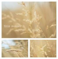 this summer by Laura1995