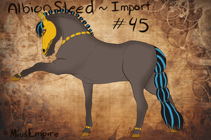 #45 AlbionSteed Import by MiusEmpire