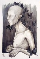 The boy who chased butterflies. by vexnir