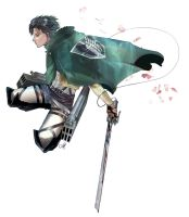 Levi Rivaille by ctyler