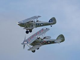 Hawker Hind and Demon Close Formation Old Warden by davepphotographer