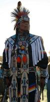 Native Pride by neaters2000
