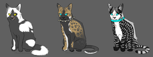 Warrior Cats Auctions OPEN by AdoptableSky