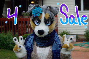 PARTIAL FOR SALE by gemsoil