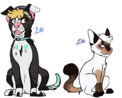 Cat and Dog Points Only -Closed- by XShadowstar