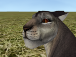 Garlicnose Close Up by YourATaco69