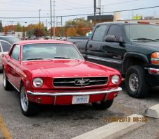 66 mustang pic 1 by catsvsfox