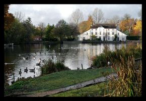 Madeley Pool and Mill. by purgatoryboy