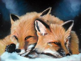 foxes in winter by Tomek3618