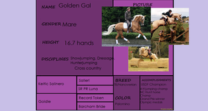 Golden Gal Pedigree by HonchoFreddy