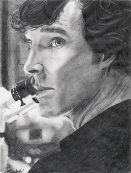 Consulting Detective With A Degree In Chemistry by xXBumbleBee25Xx