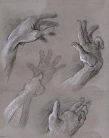Hand Study 1 by method2madness