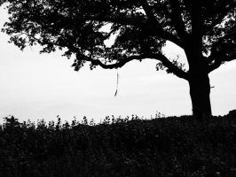 Tree by Fraped