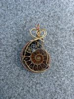 Another Aronnax Ammonite by magpie-poet