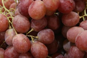 Grapes by newdystock