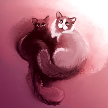 Gift - Onyx and Juniper by katiepox